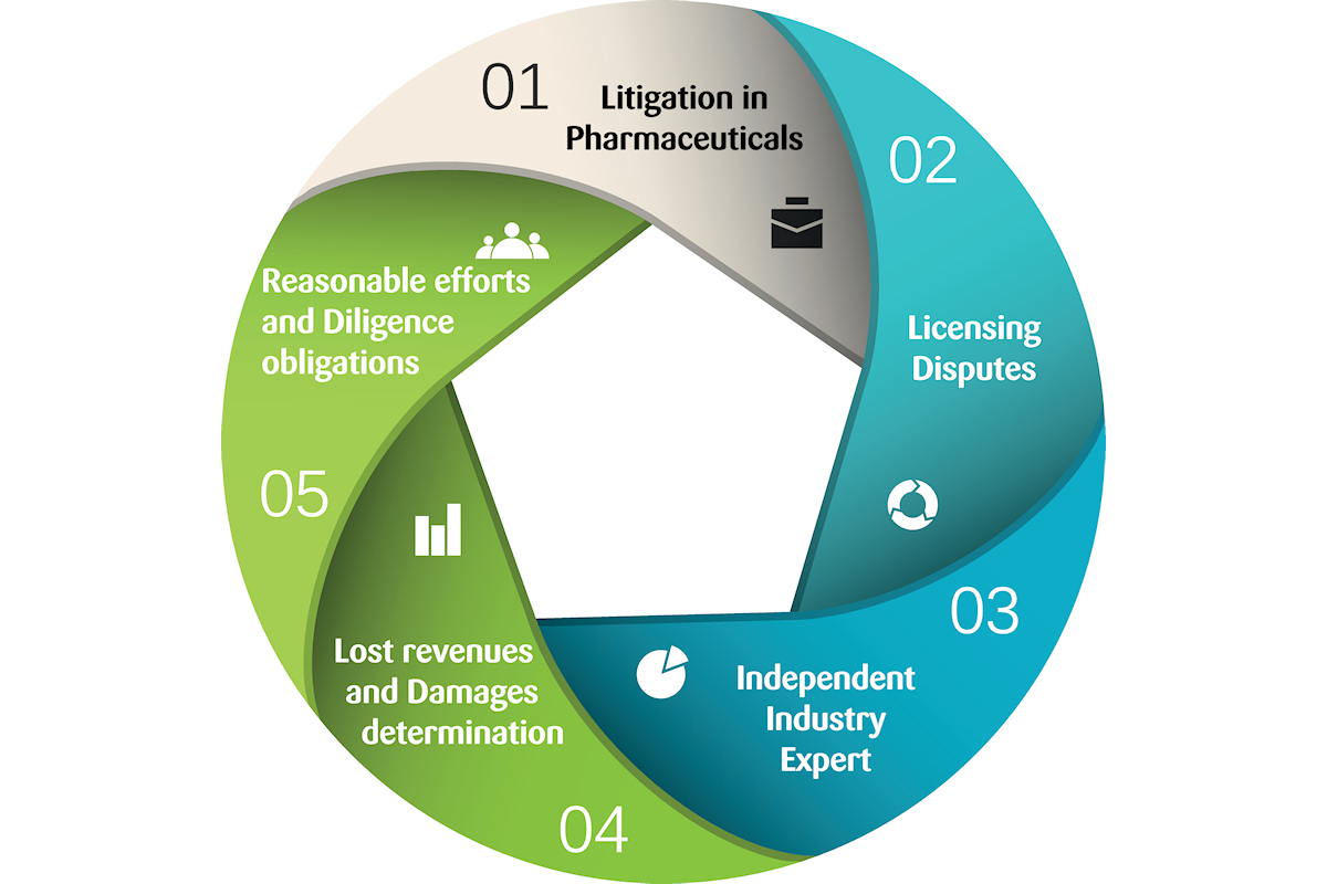 Pharmaceutical Industry Expert Witness